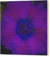 Urban Art Hibiscus II Wood Print