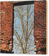 Urban Decay Wood Print by Olivier Le Queinec