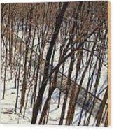 Urban Forest At Dusk Wood Print