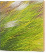 Urban Nature Fall Grass Abstract Wood Print