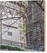 Urban View Wood Print