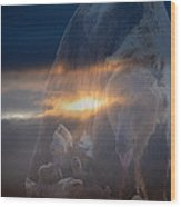 Ursa Major 2 - Great Bear Wood Print by Kevin Bone