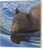 Ursa Mirrored Wood Print