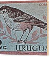 Uruguay Bird Stamp - Circa 1962 Wood Print