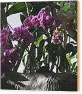 Us Botanic Garden - 121231 Wood Print