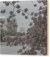 Us Capitol - Cherry Blossoms - Washington Dc - 01133 Wood Print by DC Photographer