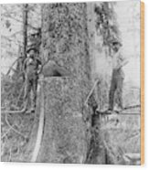 Us Forestry Wood Print