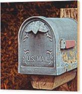 U.s. Mail Approved Wood Print