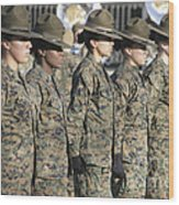 U.s. Marine Corps Female Drill Wood Print
