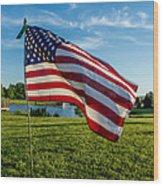 Usa Flag Wood Print by Phyllis Bradd