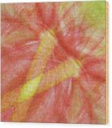 Usa, Hawaii Anthurium Flower Montage Wood Print