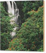 Usa, Hawaii Islands, View Of Nanue Wood Print