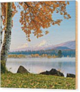 Usa, Oregon, Bend, Fall At Black Butte Wood Print