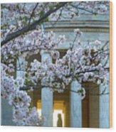 Usa, Washington Dc, Jefferson Memorial Wood Print