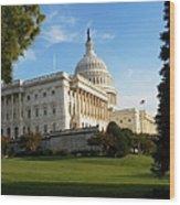 U. S. Capitol Wood Print