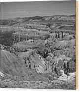 Utah 002 Wood Print