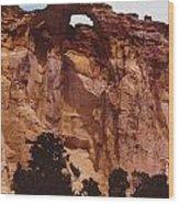 Utah Arch Wood Print