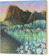 Utah Capital Reef Park Wood Print