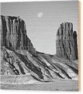 Utah Outback 21 Wood Print