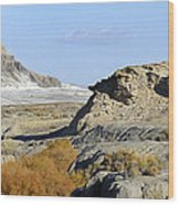 Utah Outback 42 Panoramic Wood Print by Mike McGlothlen