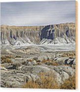 Utah Outback 43 Panoramic Wood Print