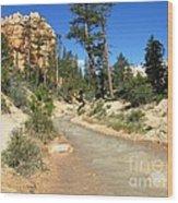 Utah Stream Wood Print