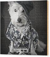 Vacation Dog With Camera And Hawaiian Shirt Wood Print
