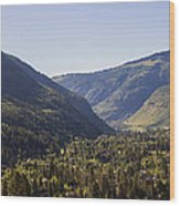 Vail In Summer Wood Print