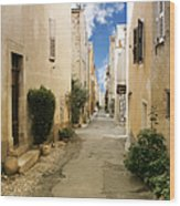 Valbonne - History And Charm  Wood Print by Christine Till