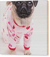 Valentine's Day - Adorable Pug Puppy In Pajamas Wood Print