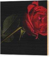 Valentine's Day Velvet Rose Wood Print