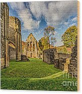 Valle Crucis Abbey Ruins Wood Print by Adrian Evans