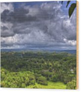 Valley At Chocolate Hills Wood Print