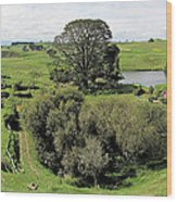 Valley At Hobbiton Nz Wood Print