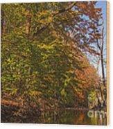 Valley Creek Wood Print by Rima Biswas