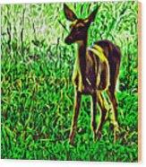 Valley Forge Deer Wood Print