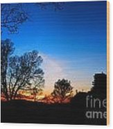 Valley Forge Evening  Wood Print