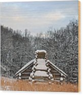 Valley Forge Winter 1 Wood Print