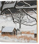 Valley Forge Winter 14 Wood Print