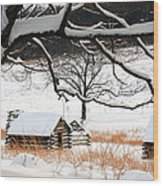 Valley Forge Winter 4 Wood Print
