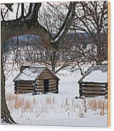 Valley Forge Winter 6 Wood Print