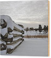 Valley Forge Winter 8 Wood Print