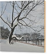 Valley Forge Winter 9 Wood Print