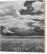 Valley In Yosemite Wood Print