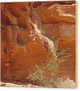 Valley Of Fire Rock Formation Wood Print