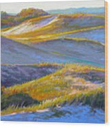 Valley Of The Dunes Wood Print by Ed Chesnovitch
