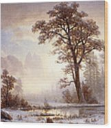 Valley Of The Yosemite Snow Fall Wood Print