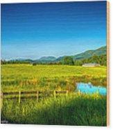 Valley Pasture Wood Print by Paul Herrmann