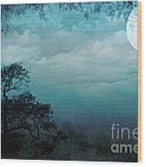 Valley Under Moonlight Wood Print