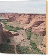 Canyon De Chelly Valley View   Wood Print